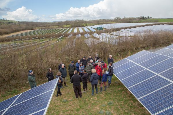 Community energy group in a solar panel field